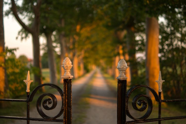 The Iron Fence – Why Should You Get One?